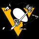 Питсбург Пингвинз